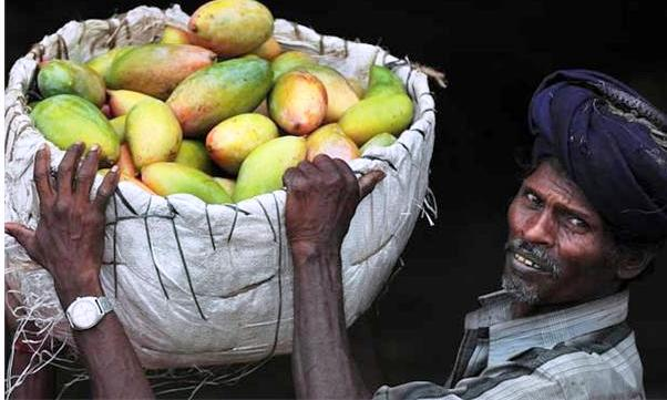 Ministry of Commerce efforts increased the Mango exports to Europe, Khurram Dastgir