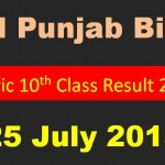 All Punjab Bises matric 10th Class Result 2015