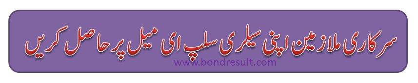Get Online Payslip All Govt of Punjab Employees in Email