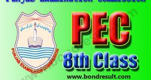 Punjab Examination Commission PEC 8th Class Result 2017 2018