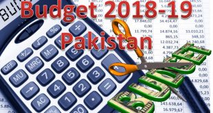 Pakistan Budget 2018-19: Salary increases of Gov employees