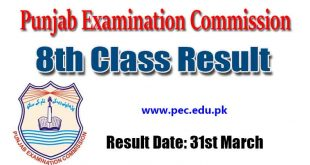 PEC 8th CLass Results