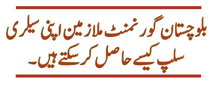 AGPR Pay slip for Govt of Balochistan Employees