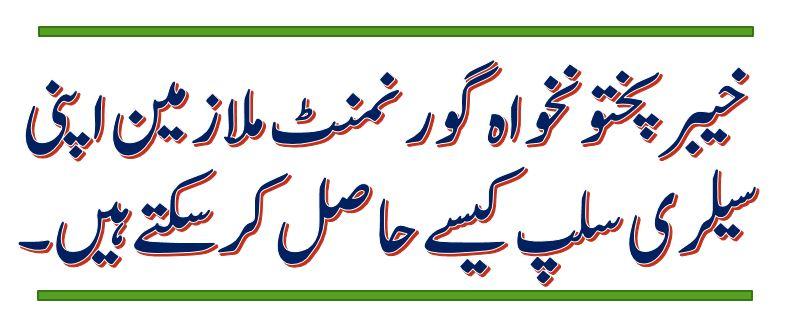 Get Salary slip for All Govt of KPK Employees Online