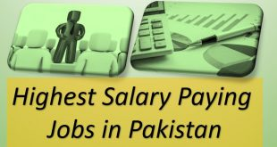 Best Paying Jobs In Pakistan for Professionals