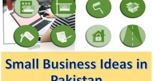 Best Small Business Ideas in Pakistan with Low investment