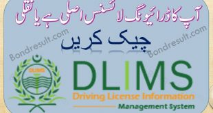DLIMS Punjab
