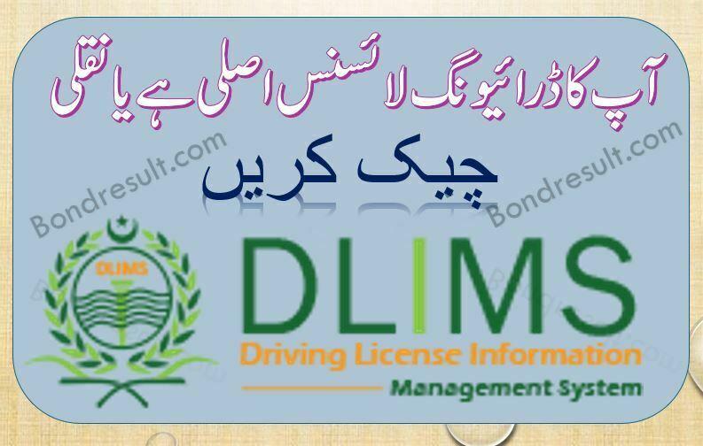 DLIMS Punjab