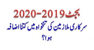 Budget Speech 2019-20 & Increase of Salaries Govt Employees